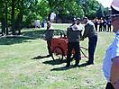 Feuerwehr 75. Jubiläum_132