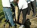 Maibaum aufstellen 2006_23
