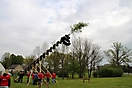 Maibaum aufstellen 2010_53