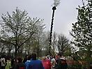Maibaum aufstellen 2013_21