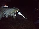 Weihnachtsbaum aufstellen 2008_24