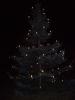 Weihnachtsbaum aufstellen 2008_42