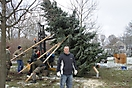Weihnachtsbaum aufstellen 2010_17