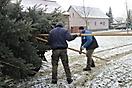 Weihnachtsbaum aufstellen 2010_4