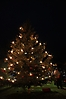 Weihnachtsbaum aufstellen 2011_16