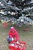 Weihnachtsbaum aufstellen 2011_1