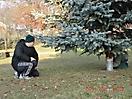 Weihnachtsbaum aufstellen 2011_25