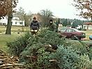 Weihnachtsbaum verbrennen 2009_1