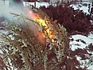 Weihnachtsbaum verbrennen 2010_17