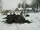 Weihnachtsbaum verbrennen 2010_5