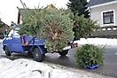 Weihnachtsbaum verbrennen 2011_17