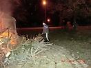 Weihnachtsbaum verbrennen 2012_21