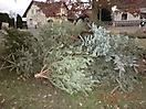 Weihnachtsbaum verbrennen 2012_5