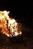 Weihnachtsbaum verbrennen 2013_6