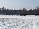 Fotowettbewerb 2012_32